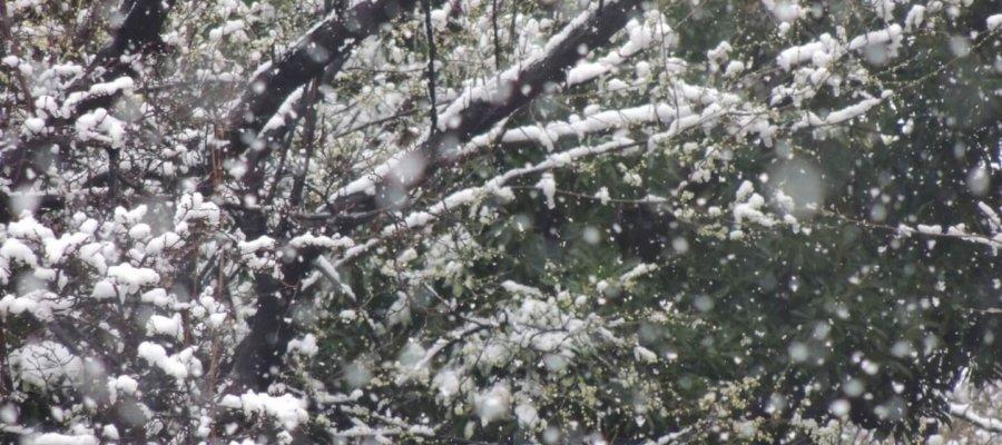 俳句イメージ画像 冬