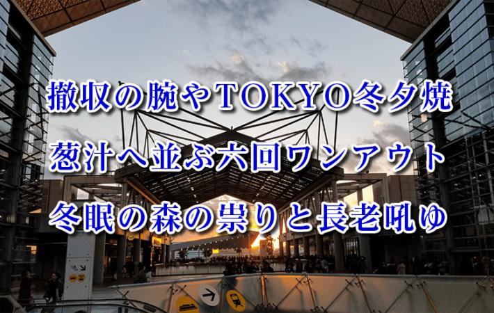 安溶二の2020年発表俳句集